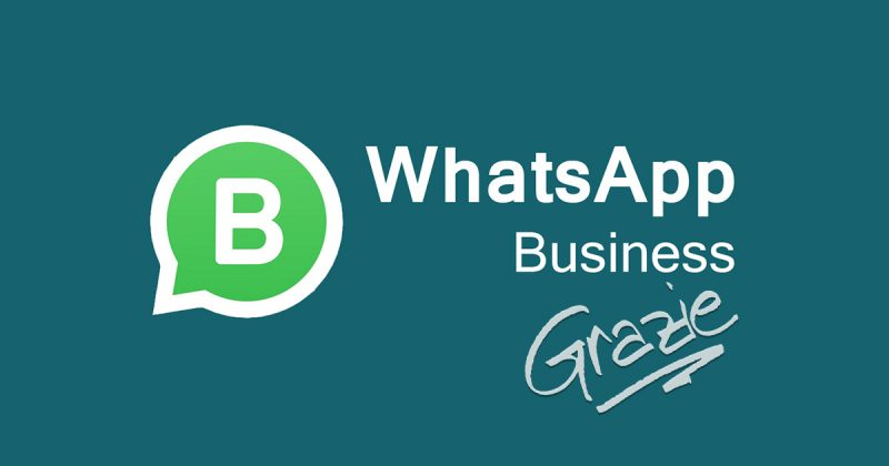 Perchè usare Whatsapp business per gestire gli ordini del tuo locale